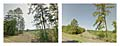 Farm to Market 1987, Corrigan, Texas.  180° Diptych.  Keystone XL Pipeline construction corridor.  Google Street View 2013.